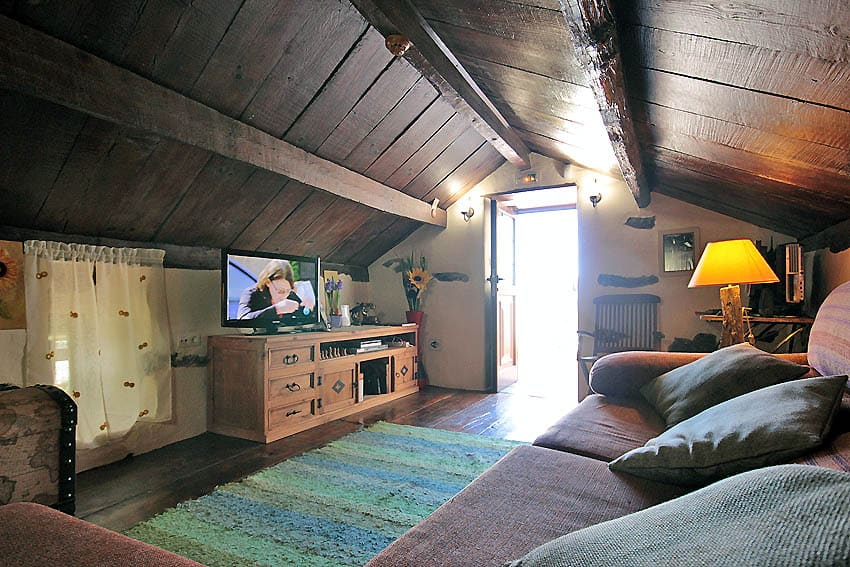 Big wooden ceiling of the living room