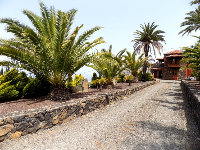 Spain - Canary Islands - La Palma - La Punta - Villa Nerea - Holiday Cottage with beautiful access road and palm trees