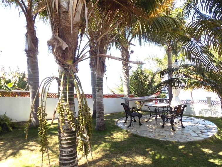 España - Islas Canarias - La Palma - La Punta - Casa Rincón del Atlántico - pequeña terraza en el jardín