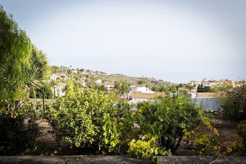 View, Casa Eliseo, Holiday Home La Gomera