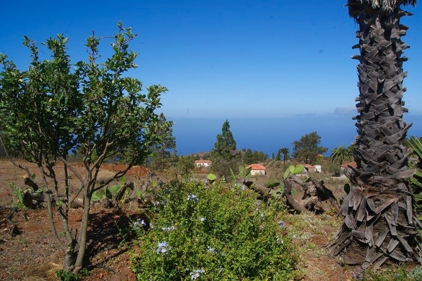 View, Casita Nidi, Holiday Home La Palma