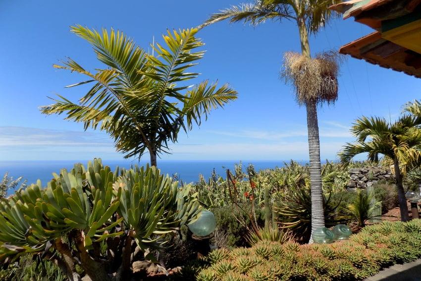 Spain - Canary Islands - La Palma - La Punta - Casa Las Vetas - Tropical garden with marvellous views towards the blue Atlantic Ocean from the holiday cottage
