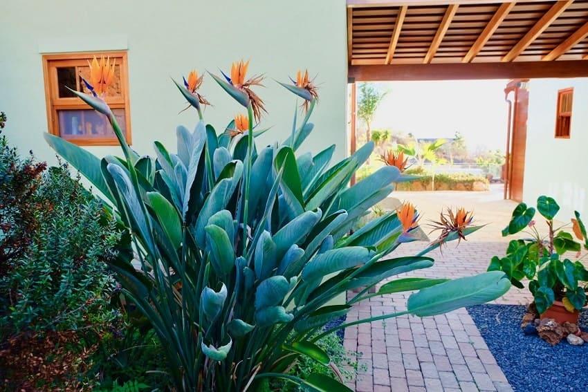 Entrance, Villa Tigotan, Villa La Palma