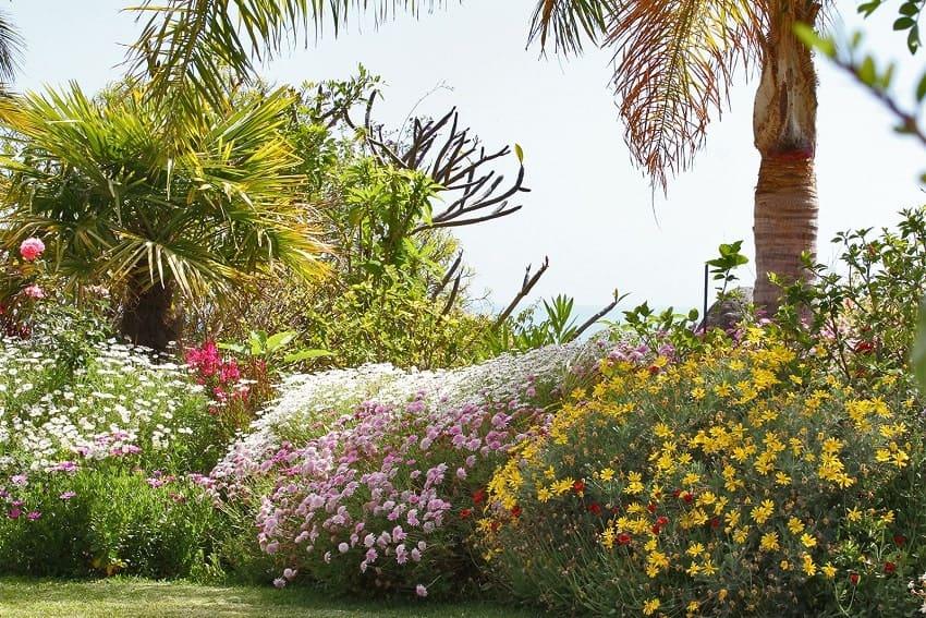 Garden, Casa Amalia, Holiday Home La Palma