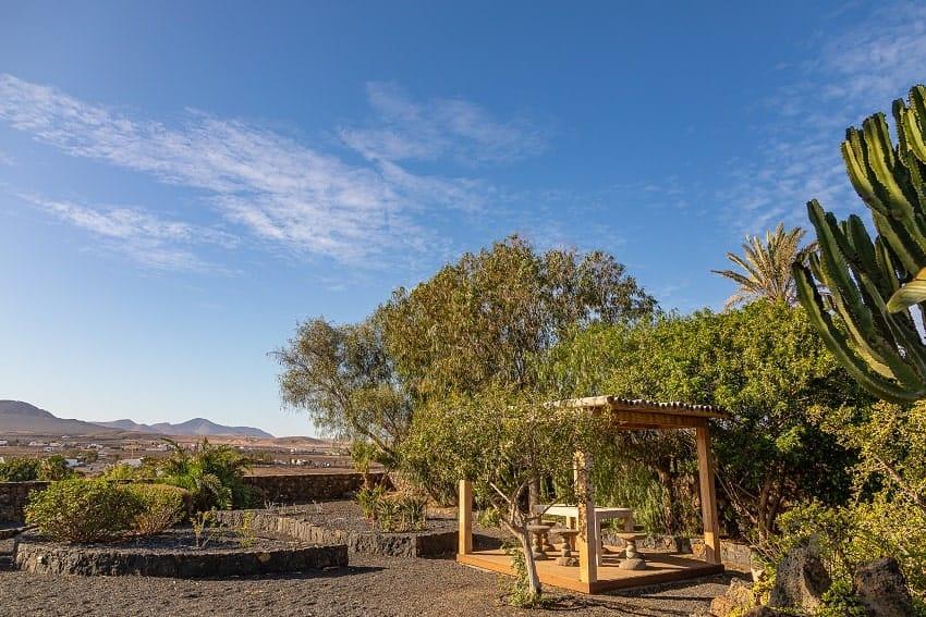 Jardin, Casa Brixio, Casa Rural Fuerteventura