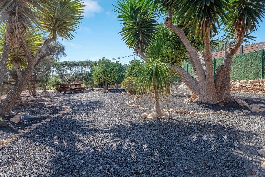Garden, Villa Cobas, Holiday Cottage Fuerteventura