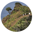 Hiking, La Palma